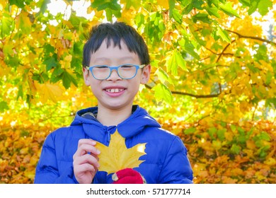 Young asian boy with yellow leave in autumn park