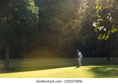 Young Asian man playing golf on a beautiful natural golf course
