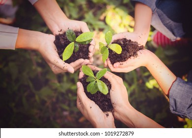 Young asian people holding young plant with soil,growing tree,support concept.
