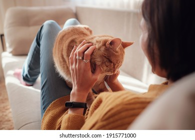 Young asian woman resting with pet in sofa at home in sunny. Beautiful ginger tabby cat. Animals and lifestyle concept.