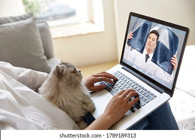 young asian woman seeing doctor online  via video conference using laptop computer with pet cat on her side