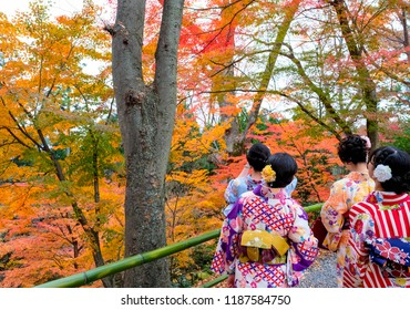 Young Asian women wearing traditional Japanese Kimono in group walking on fthe path in autumn garden, sightseeing in the park, Japan.