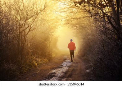 Young athlete run on nature road in frozen misty forest full of pleasure warm light. Scenery from winter morning - running concept, sport photo with space for your montage