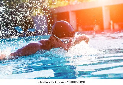Young athletic man swimming in the swimming pool. Active sport