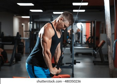 young athletic man workout triceps on block exerciser. Posing and looking at camera.