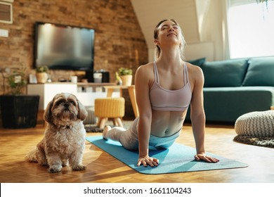 Young athletic woman in cobra pose practicing Yoga with her dog at home.