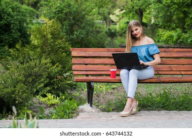 Young attractive business woman with coffee and laptop in the park.