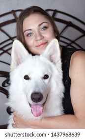 Young attractive caucasian woman embrases expressive dog of big swiss shepherd breed. Beautiful female and snowy white dog like Ghost, smiling. Indoors, copy space.