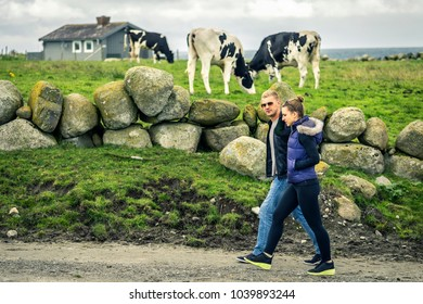Young and attractive couple in love is walking. They are passing by green field with cows. Norway.