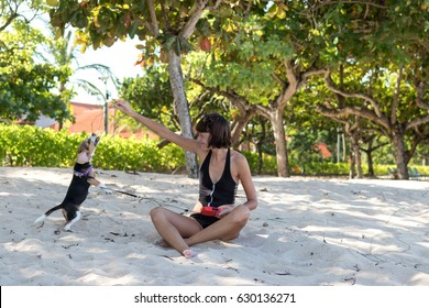Young attractive girl playing with her pet dog Beagle at the beach of tropical island Bali, Indonesia. Happy moments.