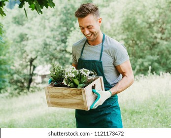 Young attractive man carries a wooden box with plants and flowers. He looks them and smiles. He is in field dressed as gardener