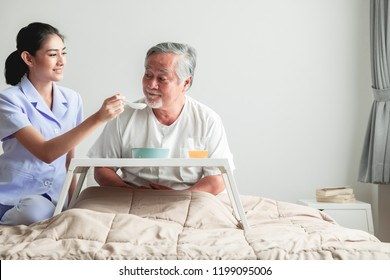 Young attractive nurse feeding breakfast to senior man in bed. Old asian male with white beard with young attractive asian woman caretaker. Senior home service concept.