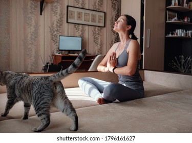 Young attractive smiling woman practicing yoga, sitting in Half Lotus exercise, wearing sportswear, meditation session, indoor full length, home interior, cat near. focus on the cat
