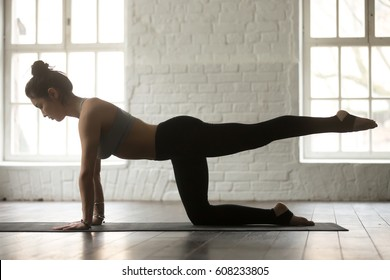 Young attractive sporty lady warming up, practicing yoga, doing Bird dog exercise, Donkey Kick pose, working out wearing sportswear bra and pants, full length, white loft studio background, side view