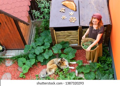 Young attractive woman with her dog in the garden