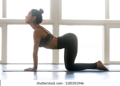 Young attractive woman practicing yoga, doing asana paired with Cat Pose on the exhale, Cow exercise, Bitilasana pose, working out wearing sportswear grey pants, top, indoor full length at yoga studio