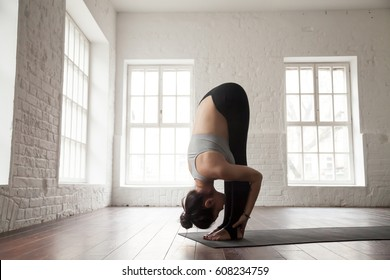 Young attractive woman practicing yoga, standing forward bend exercise, head to knees, uttanasana pose, working out, wearing sportswear bra and pants, white loft studio background, full length