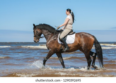 Young attractive woman riding by her horse on the seashore