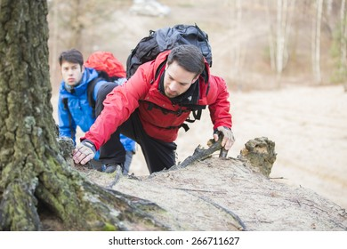 Young backpackers hiking in forest