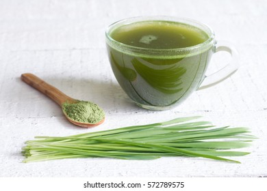 Young barley with fresh grass detox diet concept