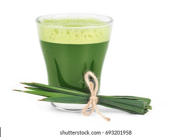 Young barley powder and drink. Detox superfood isolated on white.