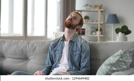Young Beard Man Sleeping Sitting on Couch
