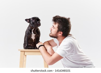 Young bearded man is training a dog, french bulldog puppy. Gives him yummy vitamins. The dog is sitting  on the high chair.