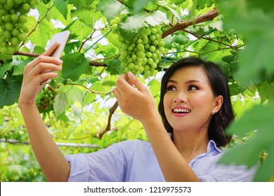 Young beautiful asian woman taking selfie, photographing herself at grape farm as a tourist spot, grape plantation,