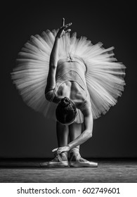 Young beautiful ballerina posing in studio