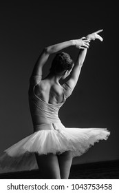 Young beautiful ballet dancer is posing in studio