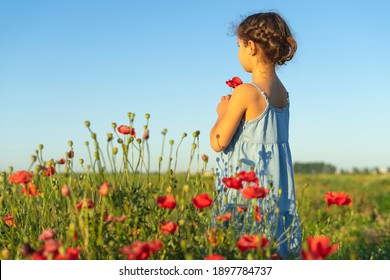Young beautiful brunette girl toddler in a field of poppies sniffing flowers against a blue sky and dreaming looking away