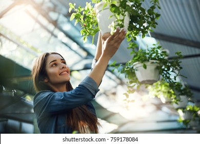 Young beautiful female customer shopping for plants in an indoor garden store.