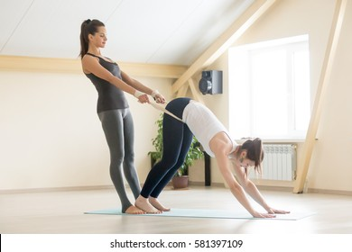 Young beautiful fit lady beginning yoga practice with private teacher at home or class, working out with professional female yogi instructor. Yoga trainer helps student to do Downward facing dog pose