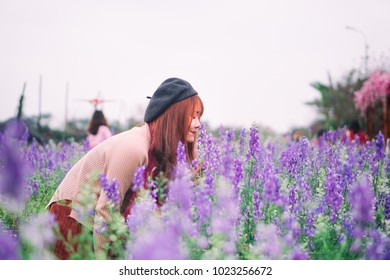 A young beautiful girl is bending to smell the lavender blooming in flower garden when spring time in Hanoi, Vietnam is coming
