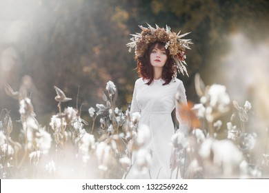 Young beautiful girl in a white vintage dress and wreath of dried flowers on the head in a autumn field. Mysterious fluffy seeds of a of opened Asclepias Syriaca pod (Milkweed, Silkweed).