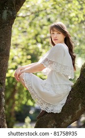 A young beautiful lady is climbing up a tree