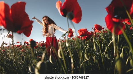Young beautiful readhead woman with freckles walking and dancing through a poppy field