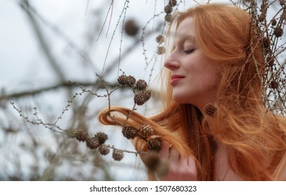 young beautiful sexy redhead woman plays smiling with pine cones and her beautiful gorgeous red hair caught in a pine branch.
