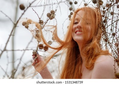 young beautiful sexy redhead woman plays laughing with pine cones and her beautiful gorgeous red hair caught in a pine branch.