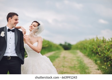 young beautiful wedding couple outside, groom and bride
