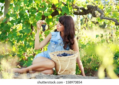 Young beautiful woman sitting in a vineyard with basket full of grapes and holding a branch of fresh tasty grapes in hand