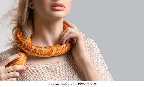 Young, beautiful, woman with snake around her neck on grey background with copy space. Double-cross, foul play, perfidy, betrayal, treachery concept. False friendship. Judas. Stab in the back.