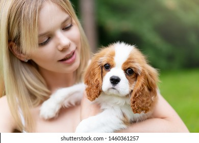 Young beautiful women hugging with the Cocker Spaniel dog