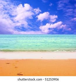 Young beautiful women on the sunny tropical beach in bikini