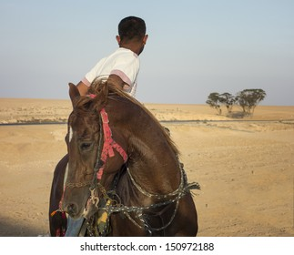 Young Bedouin boy on a horse looking back in the Negev desert in Israel