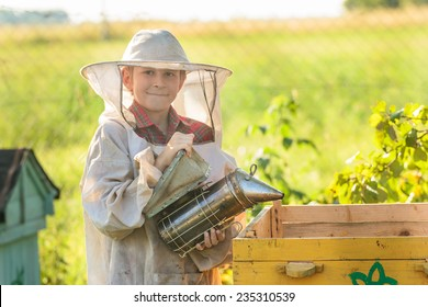 Young beekeeper is working in an apiary