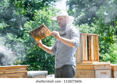 Young beekeeper working in the apiary in beekeeping veil and smoker by the wooden bee hives.
