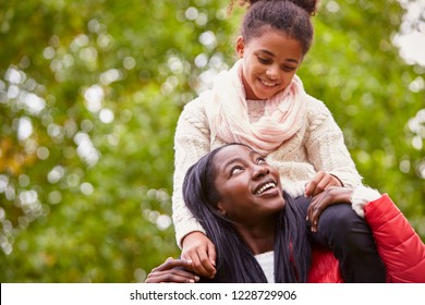 Young black woman carrying her pre-teen daughter on her shoulders in the park, both smiling at each other, close up