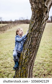 young, blond, beautiful girl is climbing on tree
