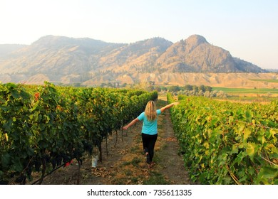 Young blonde girl is walking in the vineyard during summertime in Monte Creek Ranch winery with the view on the hills near Kamloops, BC